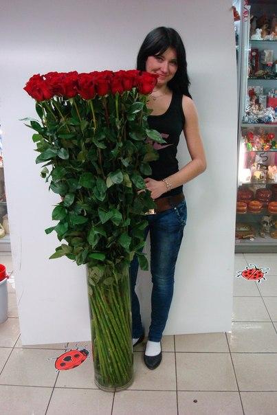 Розы гиганты